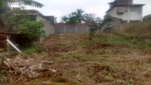 Terreno em São José com 360m2., Centro