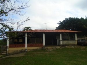 Sítio com 9800m2 , Caju